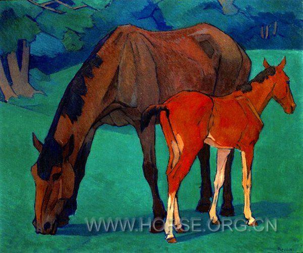 母马与小马驹.jpg